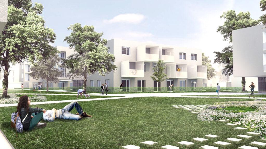 Neubauprojekt Auhirschgasse 3. Bauabschnitt mit Wiese